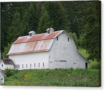 Big White Old Barn With Rusty Roof  Washington State Canvas Print by Laurie Kidd
