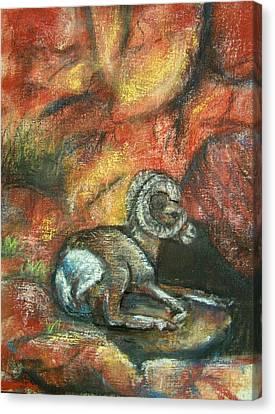 Bighorn Canvas Print by Darla Joy  Johnson