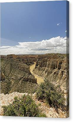 Bighorn Canyon National Recreation Area Canvas Print - Bighorn River At Devil's Canyon by Niala Branson