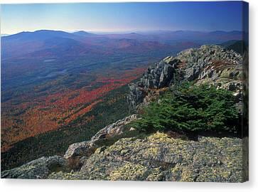Biglow Mountain Foliage View Canvas Print