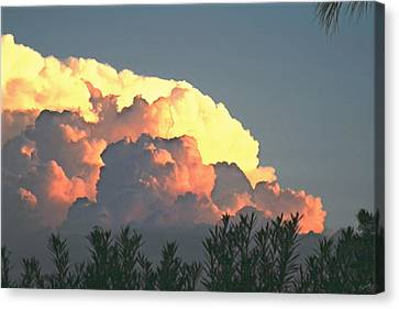 Billows Canvas Print
