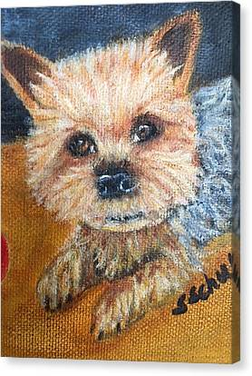 Canvas Print featuring the painting Billy by Sharon Schultz