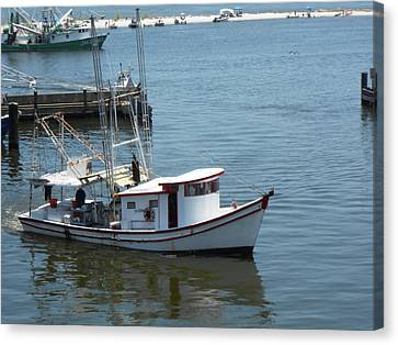Bilouxi Shrimp Boat Canvas Print by Cynthia Powell