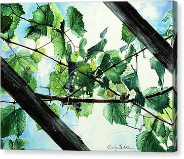 Biltmore Grapevines Overhead Canvas Print by Carolyn Coffey Wallace
