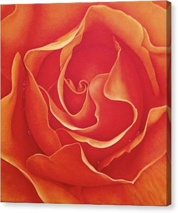 Biltmore Rose Canvas Print