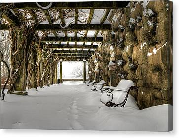Biltmore's Arbor In Snow  Canvas Print by Carol R Montoya