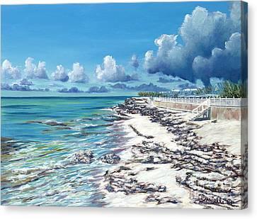 Bimini Breeze Canvas Print by Danielle  Perry