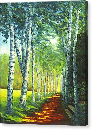 Birch Alee, St. Gaudens National Historic Site, Nh Canvas Print