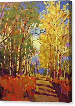 Birch Canvas Print by Brian Simons