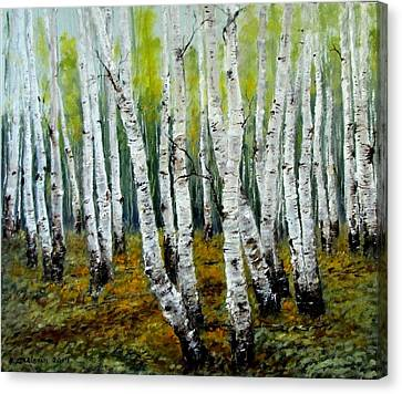 Birch Trail Canvas Print