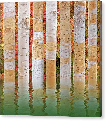 Abstract Water And Fall Leaves Canvas Print - Birch Tree Autumn Abstract Reflections by Gill Billington