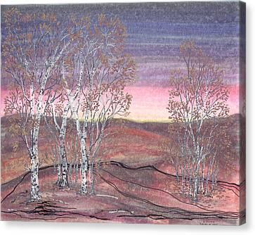 Birches At Dawn Canvas Print