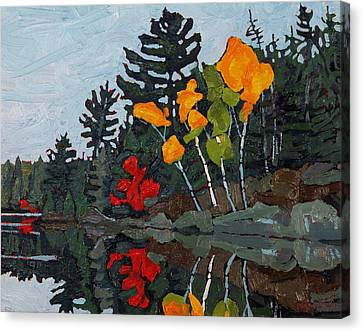 Canoe Canvas Print - Birches Canoe Lake by Phil Chadwick