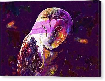 Canvas Print featuring the digital art Bird Barn Owl Owl Barn Animal  by PixBreak Art