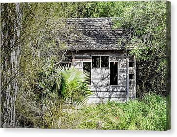 Bird Blind At Frontera Audubon Canvas Print