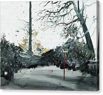 Bird Box Canvas Print by Calum McClure