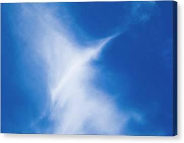 Canvas Print featuring the photograph Bird Cloud by Yulia Kazansky