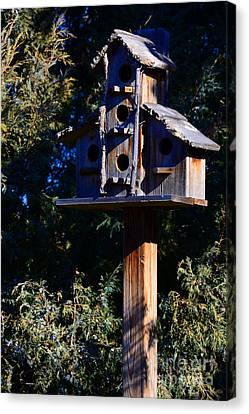 Bird Condos Canvas Print by Robert WK Clark