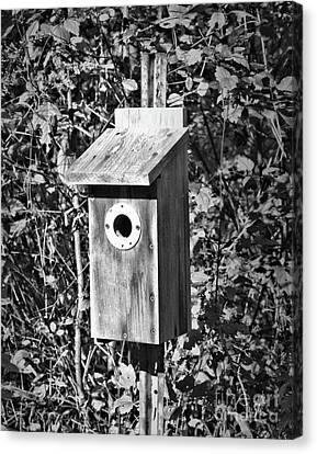 Bird House In Black And White Canvas Print by Smilin Eyes  Treasures