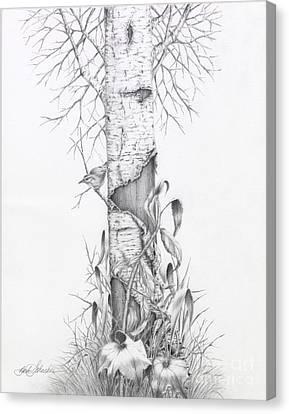 Bird In Birch Tree Canvas Print
