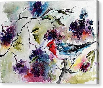 Canvas Print featuring the painting Bird In Elderberry Bush Watercolor by Ginette Callaway