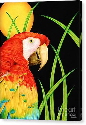 Macaw Canvas Print - Bird In Paradise by Sheryl Unwin