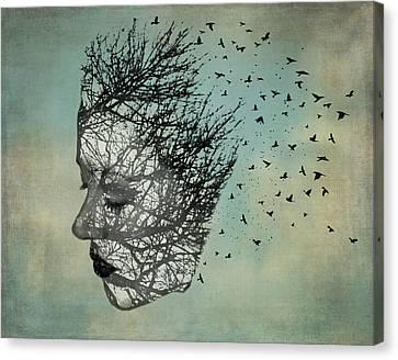 Bird Lady Canvas Print by Diana Boyd