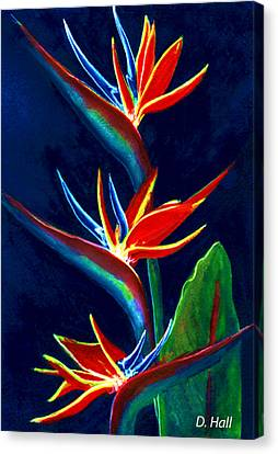 Bird Of Paradise #161 Canvas Print by Donald k Hall