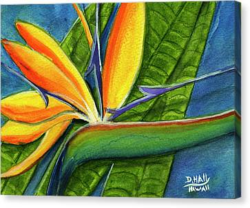 Bird Of Paradise #300b Canvas Print by Donald k Hall