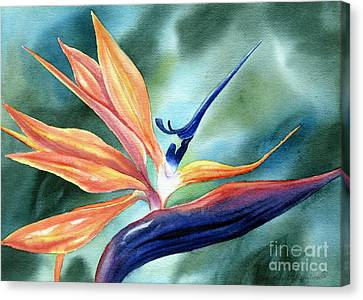 Bird Of Paradise Canvas Print by Deborah Ronglien