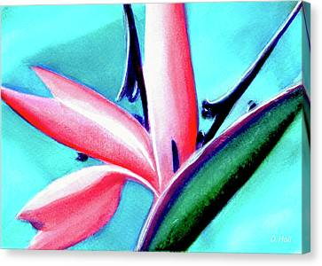 Bird Of Paradise Flower #290 Canvas Print by Donald k Hall