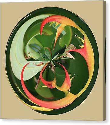 Canvas Print featuring the photograph Bird Of Paradise Orb by Bill Barber