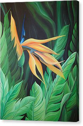 Bird Of Paradise Canvas Print by William Love