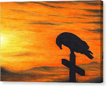 Bird Of Pray Canvas Print by Don McMahon
