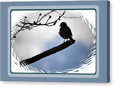 Bird On A Branch Canvas Print by Russ Mullen