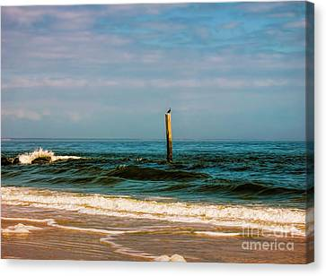 Bird On A Pole Canvas Print