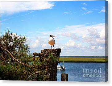 Canvas Print featuring the photograph Bird On A Stump by John Rizzuto