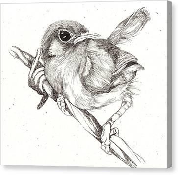 Bird On A Wire Canvas Print by Deborah Wetschensky