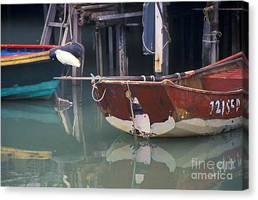 Bird On Boat Oar - Hong Kong Canvas Print by Gordon Wood