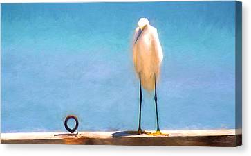 Bird On The Rail Canvas Print