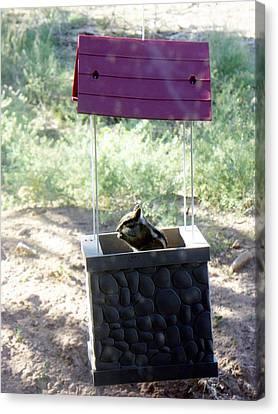 Bird Seed Thief Chipmunk Canvas Print