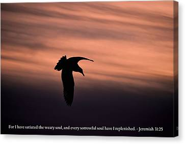 Canvas Print featuring the photograph Bird Silhouette With Jeremiah 31-25 Scripture by Matt Harang