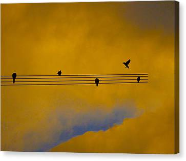 Bird Song Canvas Print