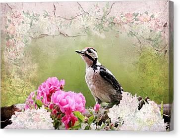 Bird Stilllife Canvas Print