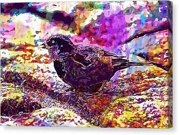 Canvas Print featuring the digital art Bird The Sparrow Nature Pen  by PixBreak Art