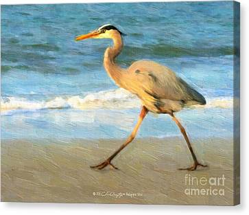 Bird With A Purpose Canvas Print