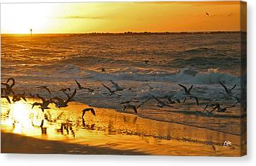 Canvas Print featuring the photograph Birds At Sunrise by Phil Mancuso