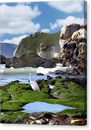 Bird's Eye View Canvas Print by Kurt Van Wagner