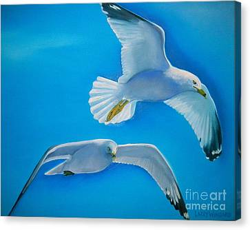 Birds Eye View Canvas Print by Lacey Wingard