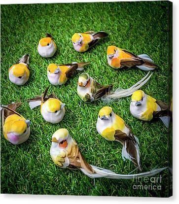 Toy Animals Canvas Print - Birds Figurine by Bernard Jaubert